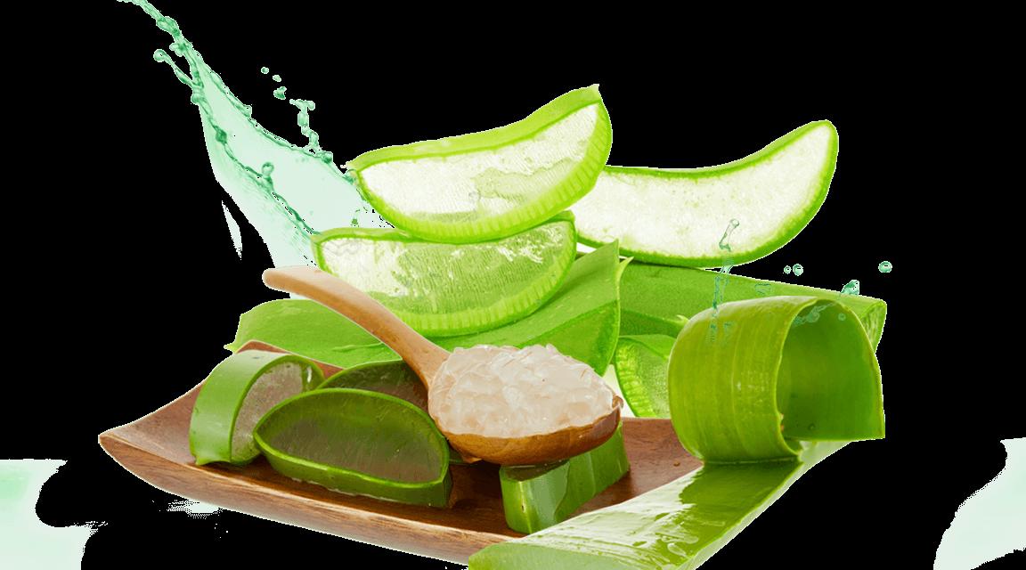 5 Ingredientes Que Puedes Añadirle A Tu Shampoo Para El Crecimiento Rápido Del Cabello