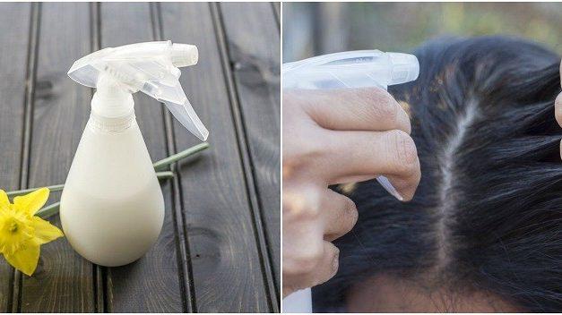 Spray De Shampoo Seco Casero Para Cabello Grasoso
